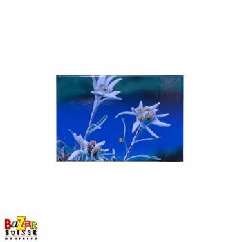 Decorative fridge magnet - Edelweiss